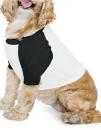 Dog Poly-Cotton 3/4 Sleeve Raglan T-Shirt, American...