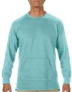 Adult French Terry Crewneck Sweatshirt, Comfort Colors...