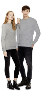 Unisex Standard Fitted Sweatshirt, Continental Clothing N62 // CCN62